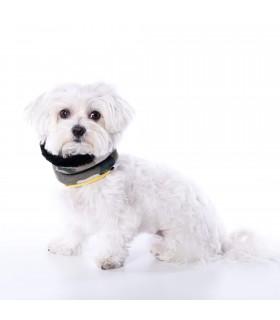 Cuello Bufanda para perro Uoamy Camuflaje