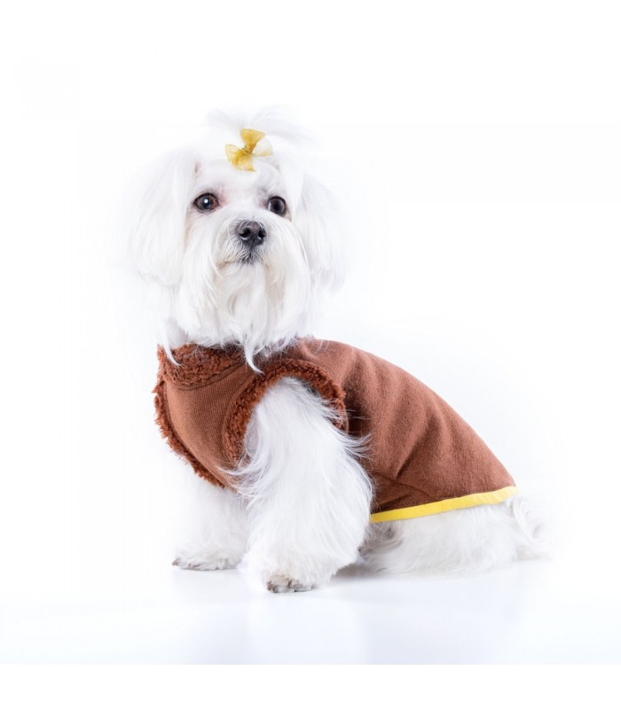 Willy Fall Sweater