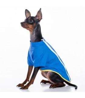 Samstag Electric Blue Rain Coat